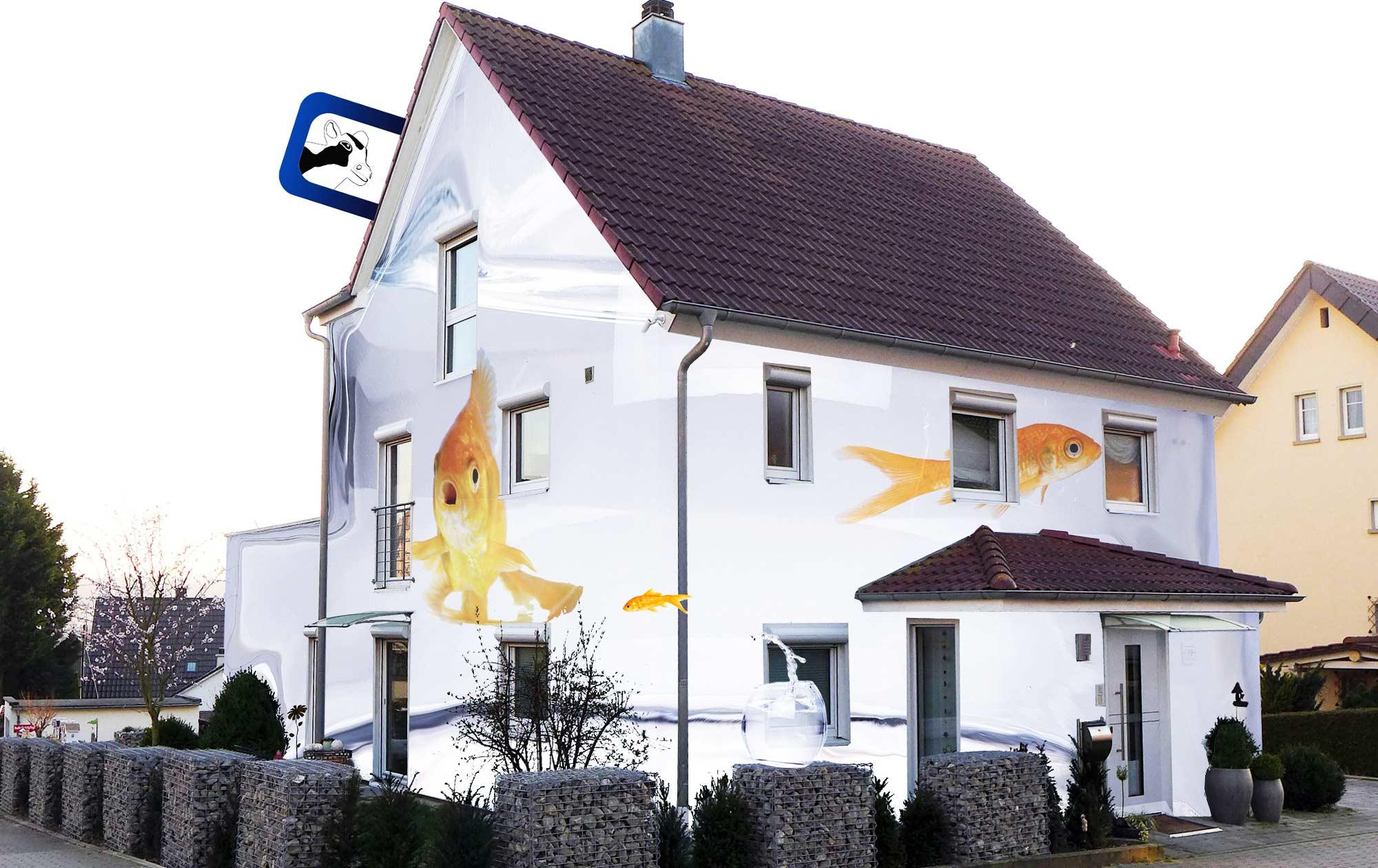 Digitale Farbberatung Fassade mit Goldfischen